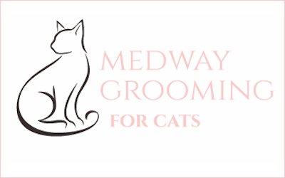 Grooming for all dogs and cats in Medway
